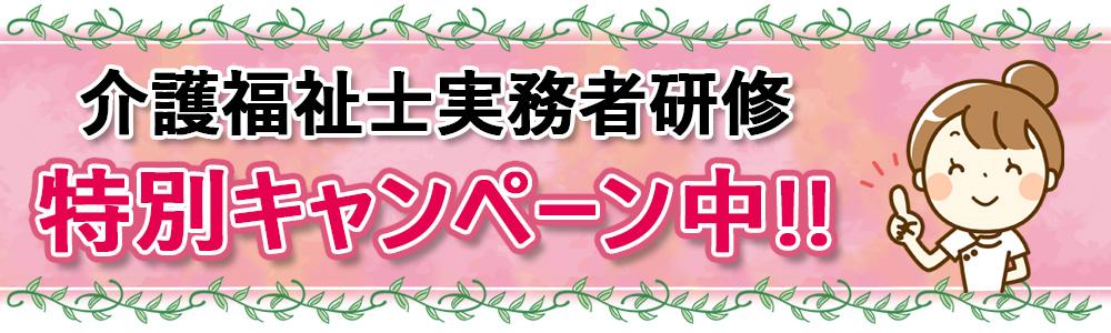 介護福祉士実務者研修 特別キャンペーン中!!